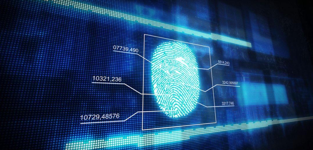 Biometrische Sicherheitsverfahren für maximalen Schutz 3