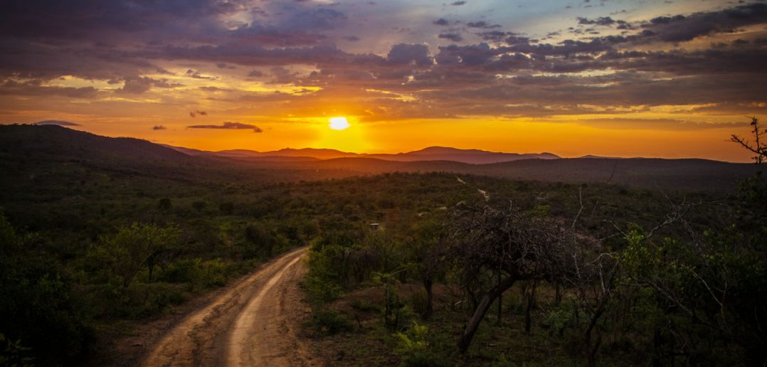 Mobile Payment in Afrika – eine Erfolgsgeschichte feiert runden Geburtstag 2