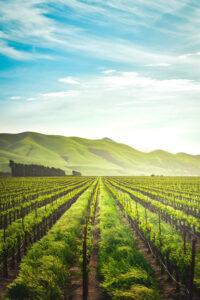Vernetzte Acker – Digitalisierung in der Landwirtschaft 4