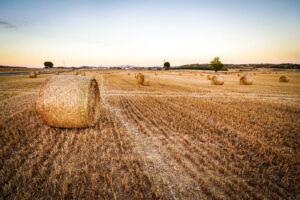 Vernetzte Acker – Digitalisierung in der Landwirtschaft 3