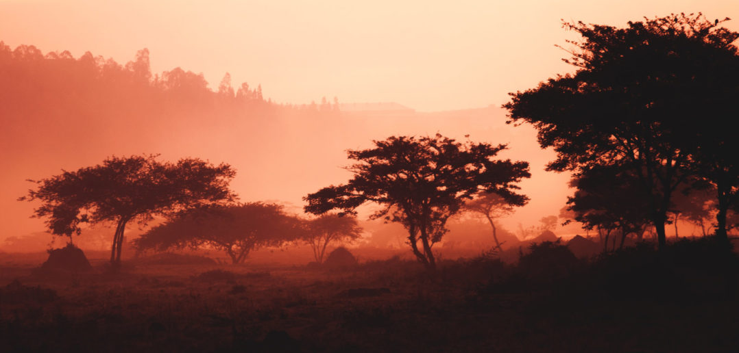 Bargeldlos bis 2020: Mobile Payment in Ruanda 5
