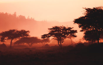 Bargeldlos bis 2020: Mobile Payment in Ruanda 20