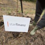 CO2-Kompensation – Star Finanz engagiert sich für Aufforstung und Umweltschutz 9