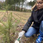 CO2-Kompensation – Star Finanz engagiert sich für Aufforstung und Umweltschutz 10