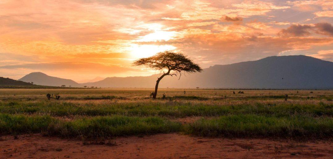 Gemeinsam die Digitalisierung in Ostafrika vorantreiben 5