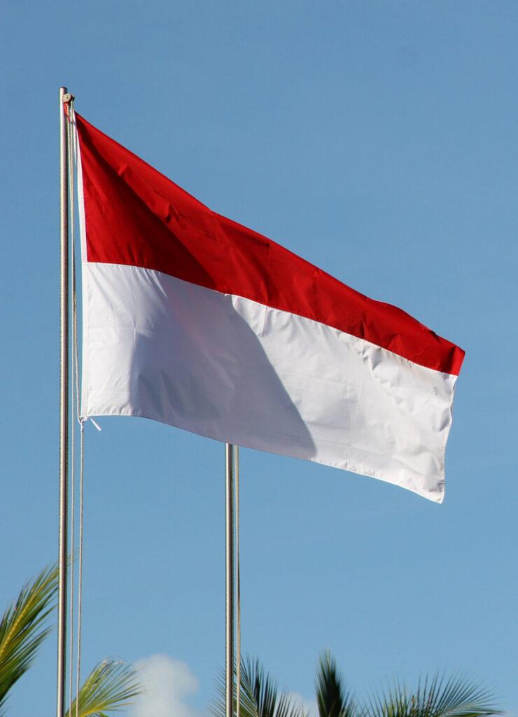 Mobile Payment in Indonesien: Einheit in Vielfalt 5