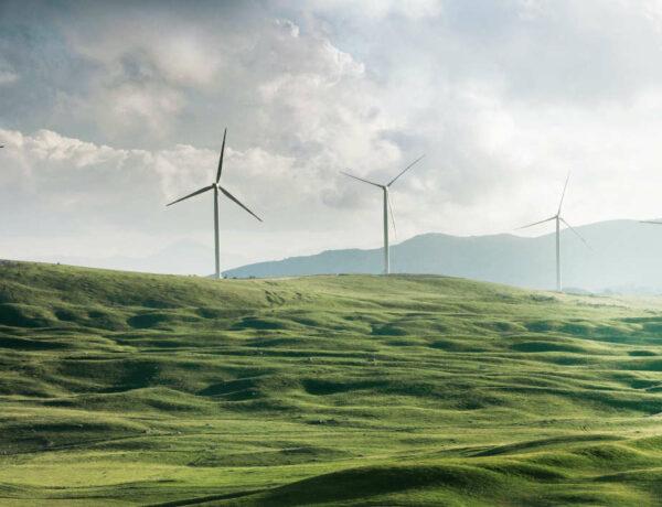 Kryptowährung IOTA als Treiber für Effizienz und Nachhaltigkeit