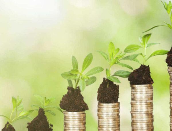 Gut sein und Gewinn machen – nachhaltige Geldanlagen boomen