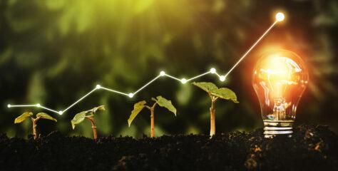 Klimaschutz mit Hilfe künstlicher Intelligenz